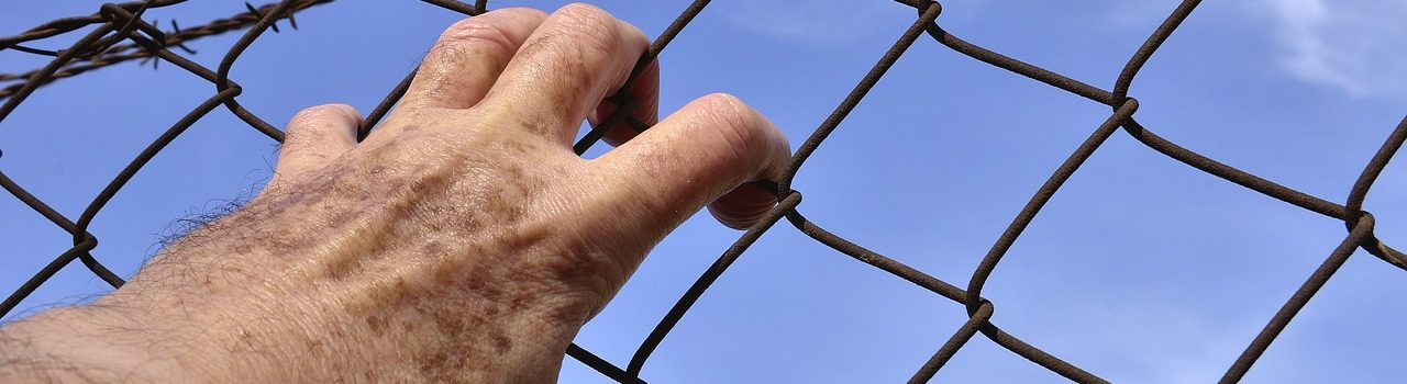 barbed-wire-1408454_1280
