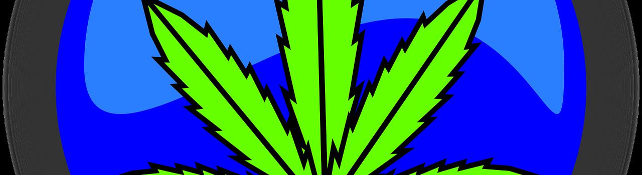 cannabis-490775_1280